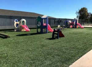 Photograph of our lawn full of play equipment for children of all ages